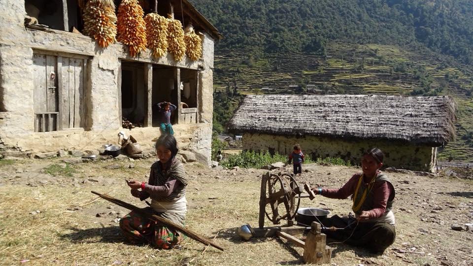 hemp wholesaler supplier nepal