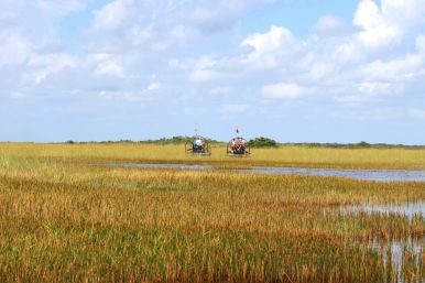 Things to do in Florida: Visiting The Everglades on Hand Luggage Only Blog (4)