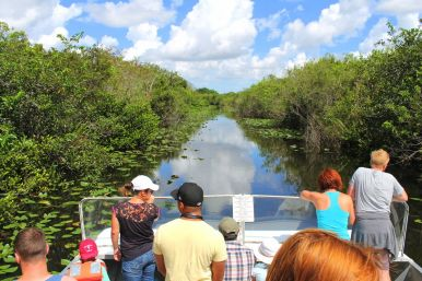 Things to do in Florida: Visiting The Everglades on Hand Luggage Only Blog (5)