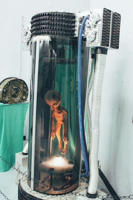 Alien Hunting in Roswell, New Mexico (7)