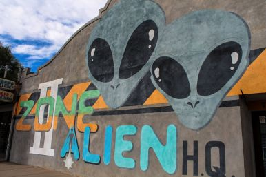 Alien Hunting in Roswell, New Mexico (4)