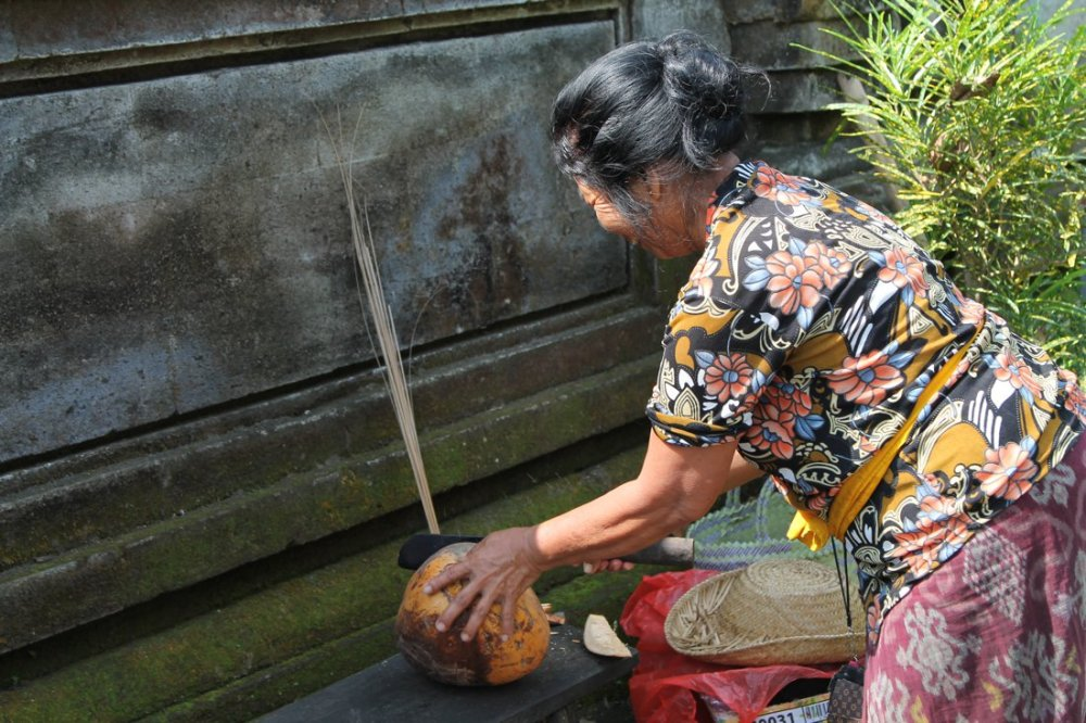 The Woman and The Coconut in Goa Gajah Temple, Bali, Indonesia (7)
