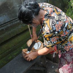 The Woman and The Coconut in Goa Gajah Temple, Bali, Indonesia (3)