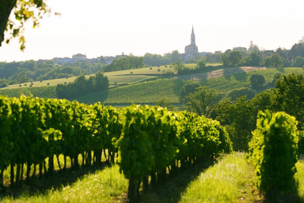 12 Places You Have To Visit In France And Why! (5)
