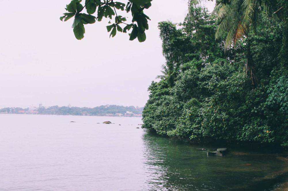 Going Off The Beaten Track in Singapore: Exploring Ubin Island... (17)