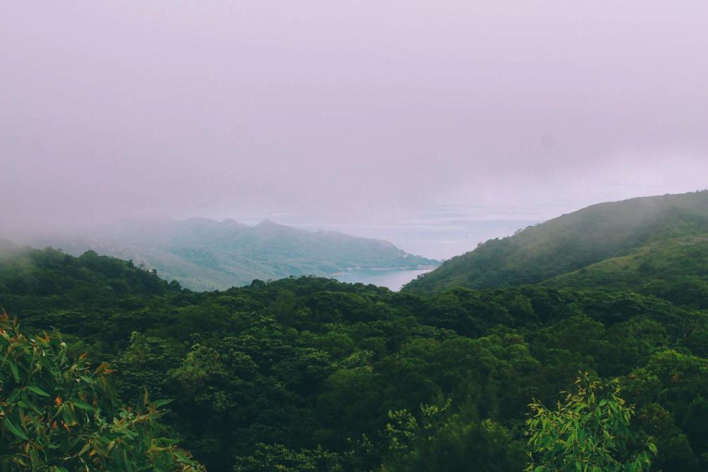 Things To Do In Lantau Island, Hong Kong (24)