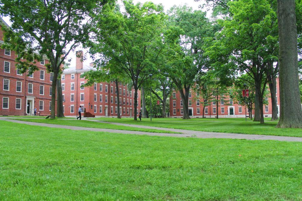 Squirrels, Strawberries And Frozen Yoghurts in Harvard (9)