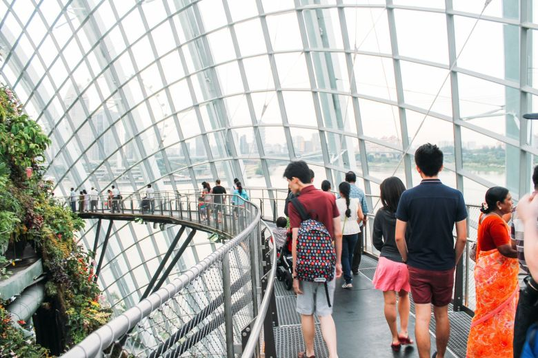 Under The Dome And Into The Forest... In Singapore, Flower Dome and Cloud Forest, Gardens By The Bay (12)