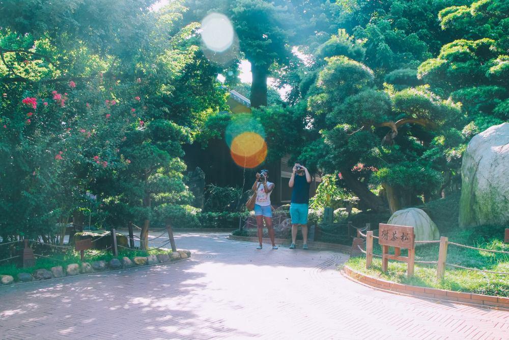 Photo Diary: Hong King City Lights! (5)