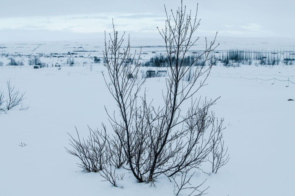 The 1st Day in The Land Of Fire and Ice - Iceland! Lava Baking, Geo-Thermal Pools & The Golden Circle (Part 2) (24)