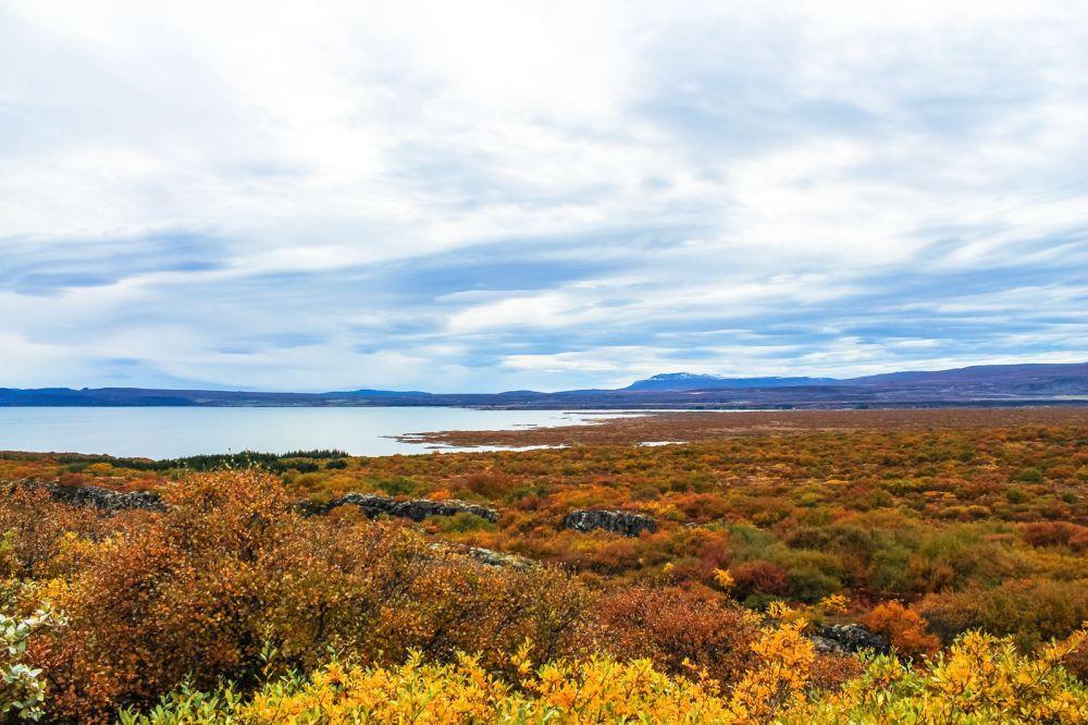 The Northern Lights, Eyjafjallajökull And Þingvellir National Park (6)