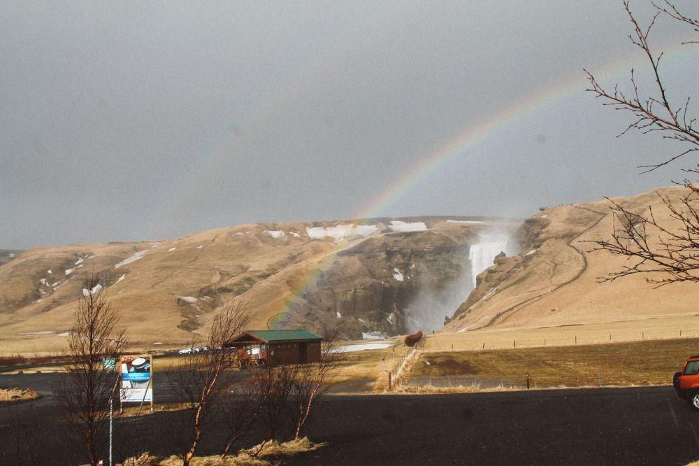 Seljalandsfoss and Skógafoss Waterfalls in Iceland plus Icelandic Lamb and rainbows (24)