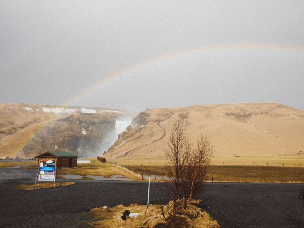 Seljalandsfoss and Skógafoss Waterfalls in Iceland plus Icelandic Lamb and rainbows (27)