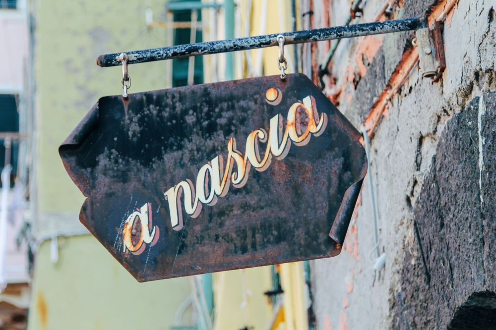 Vernazza in Cinque Terre, Italy - The Photo Diary! [4 of 5] (18)