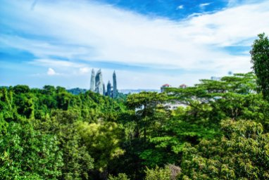 14 Of The Best Things To Do In Singapore (42)