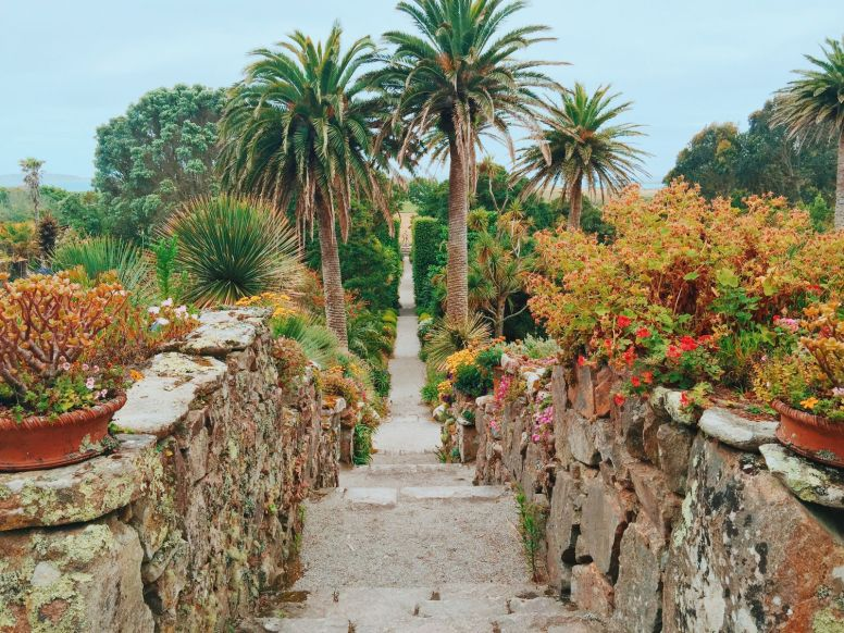 More Photos From The Isles Of Scilly... (5)