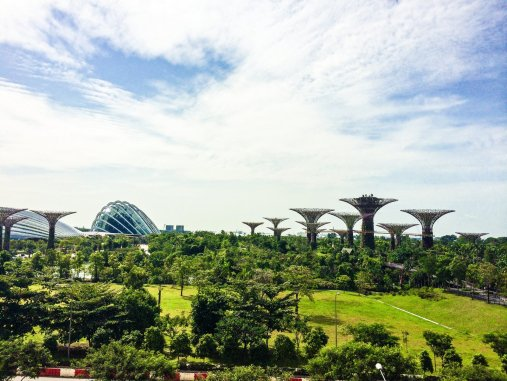 14 Of The Best Things To Do In Singapore (49)