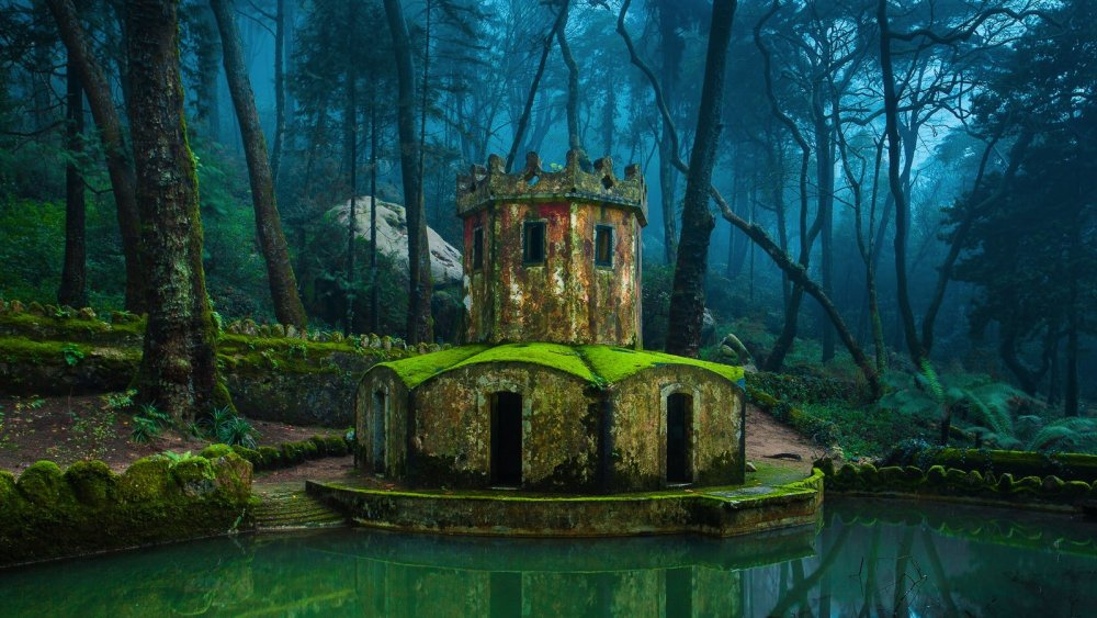 8 Reasons Why You Have To Visit Sintra In Portugal! (14)