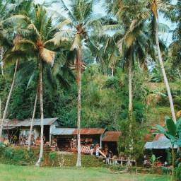 Bali Memories... (1)