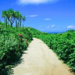 Kayaking in Bryher, Honesty Boxes and Tropical Island Hues... In Bryher Island, Isles of Scilly, UK (50)