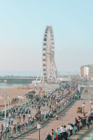 11 Very Best Things To Do In Brighton (4)