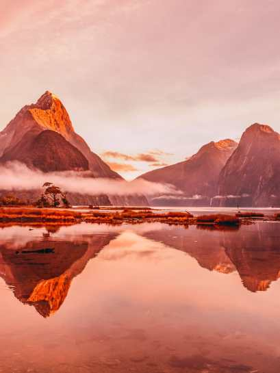 Unique Experiences You Need To Have In New Zealand (2)