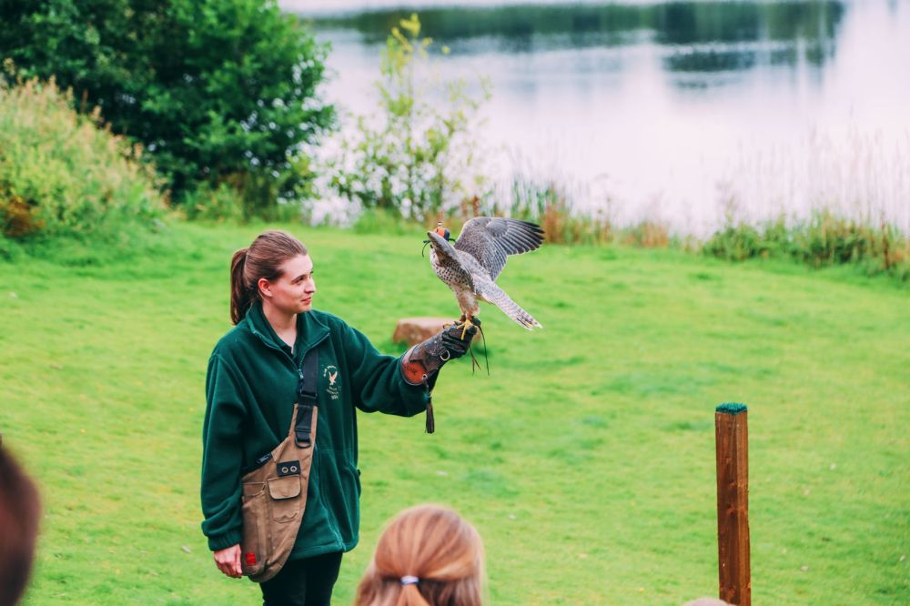 Safari In Scotland - The Photo Diary at Blair Drummond Safari and Adventure Park (27)