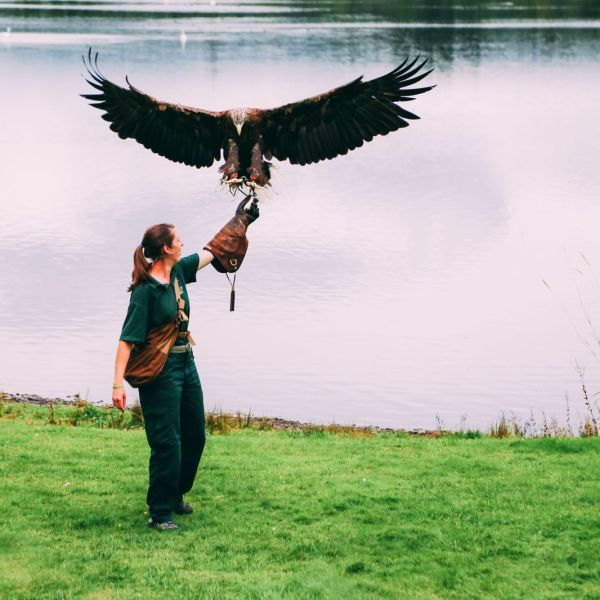 Safari In Scotland - The Photo Diary at Blair Drummond Safari and Adventure Park (31)
