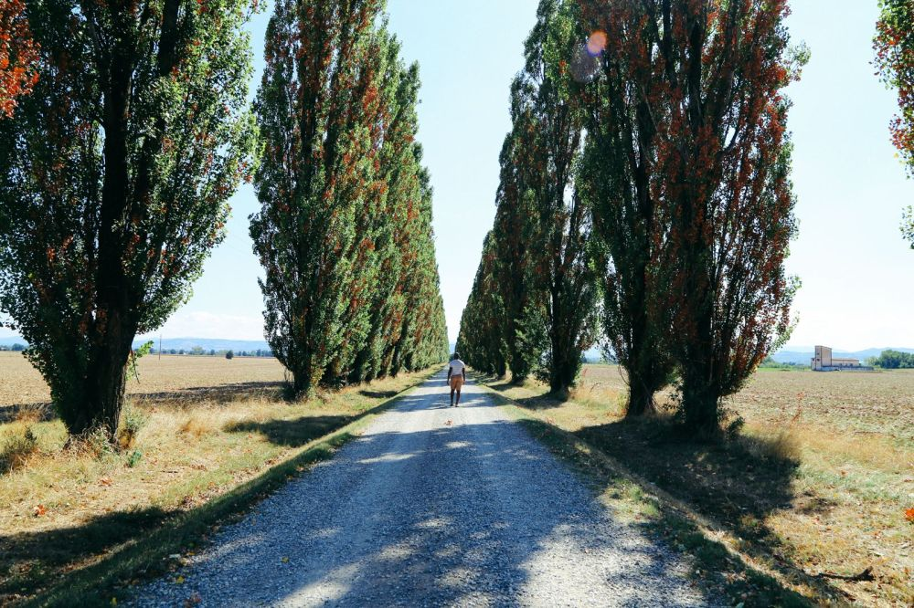 Photo Diary: Corn Fields And Open Roads... In Italy (6)