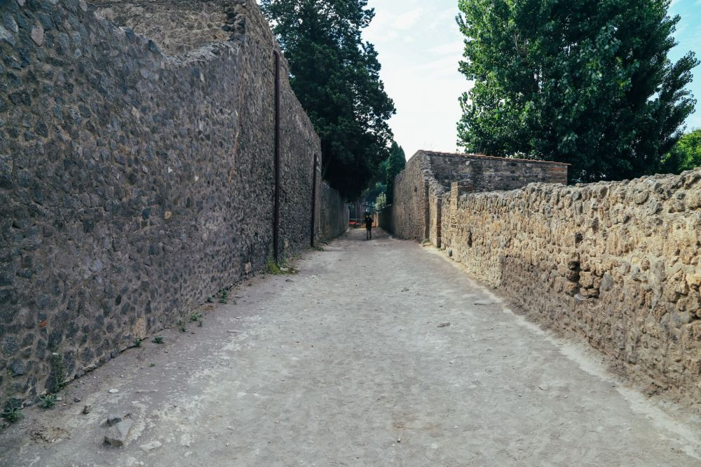 The Ancient City Of PompeiI (25)