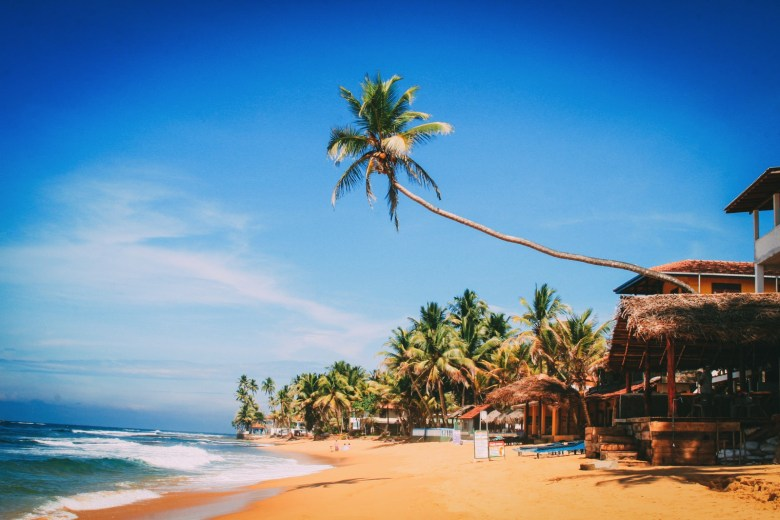 10 Beaches You Have To Visit In Sri Lanka (4)
