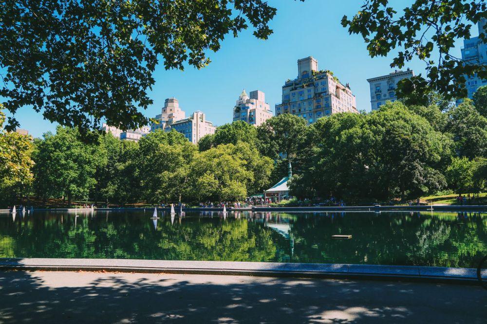 Central Park - A New York Photo Diary (1)