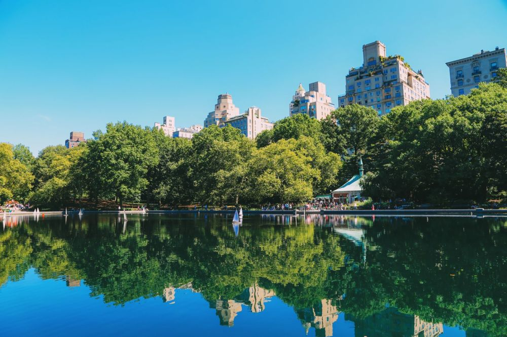 Central Park - A New York Photo Diary (2)