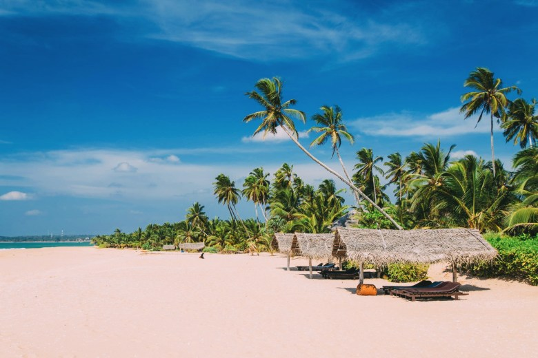 10 Beaches You Have To Visit In Sri Lanka (8)