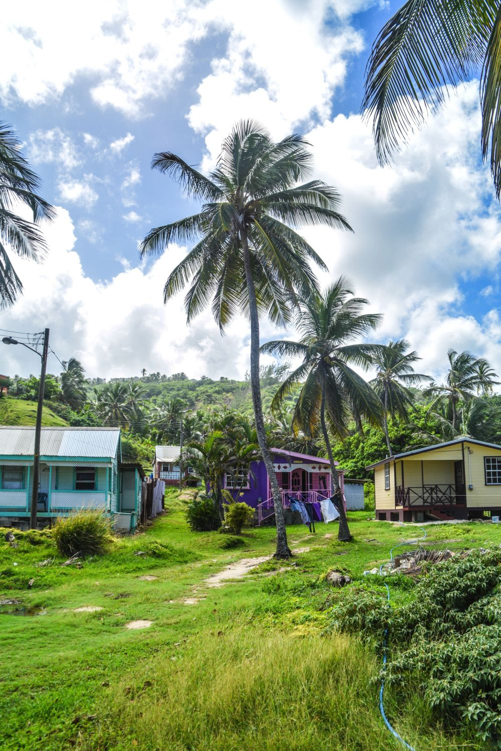 Exploring The Unspoilt Beauty of East Barbados (6)