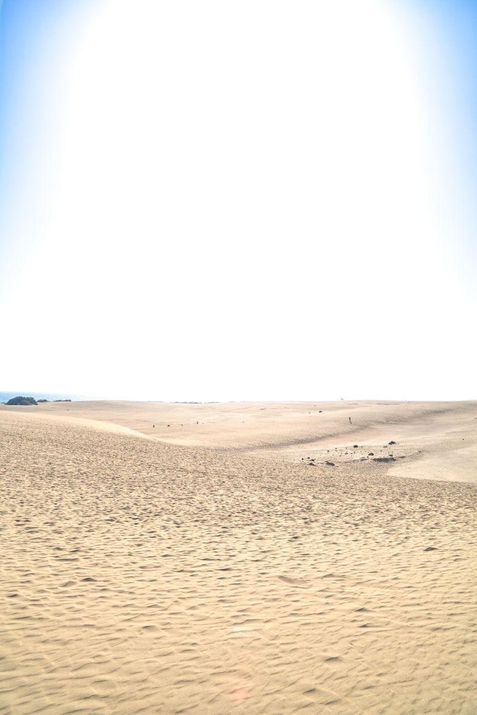 Exploring The Natural Beauty of Fuerteventura (7)