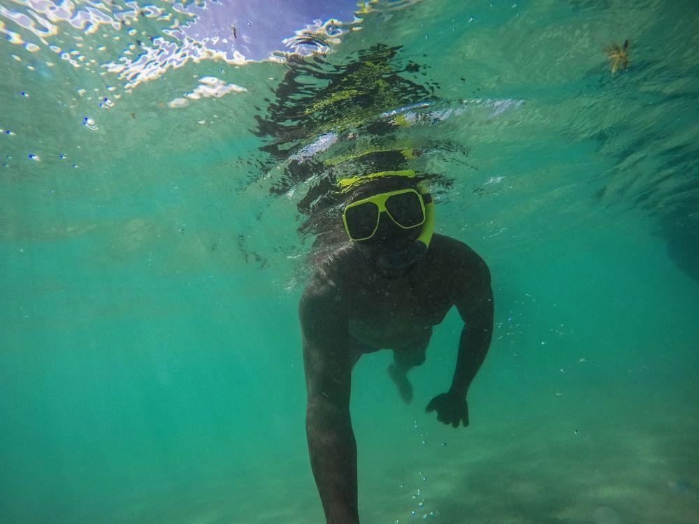 How To Swim With Wild Stingrays In Antigua (39)