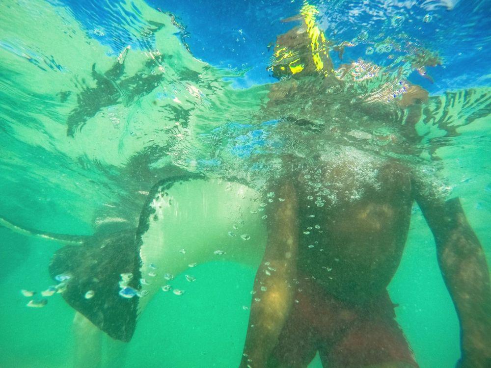 How To Swim With Wild Stingrays In Antigua (18)