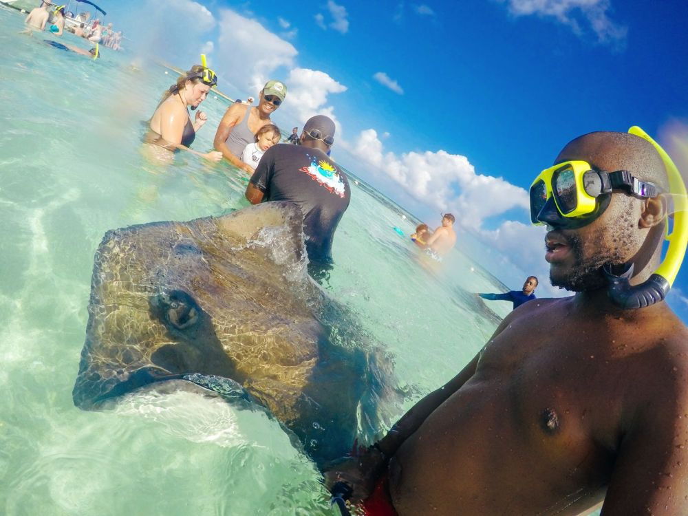 How To Swim With Wild Stingrays In Antigua (4)