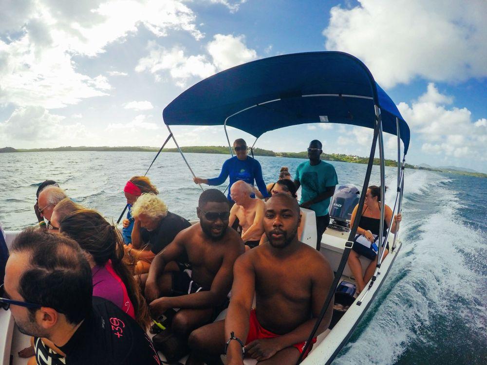 How To Swim With Wild Stingrays In Antigua (1)