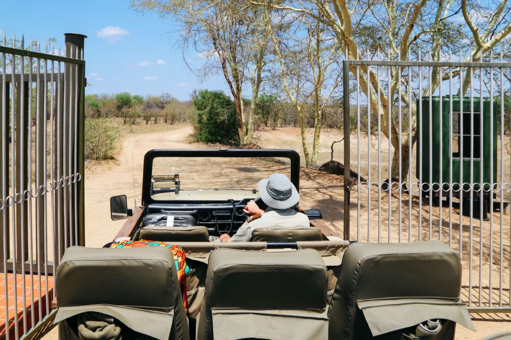 Arriving On Safari In South Africa... (Definitely Not Your Average Airport Transfer!) (4)