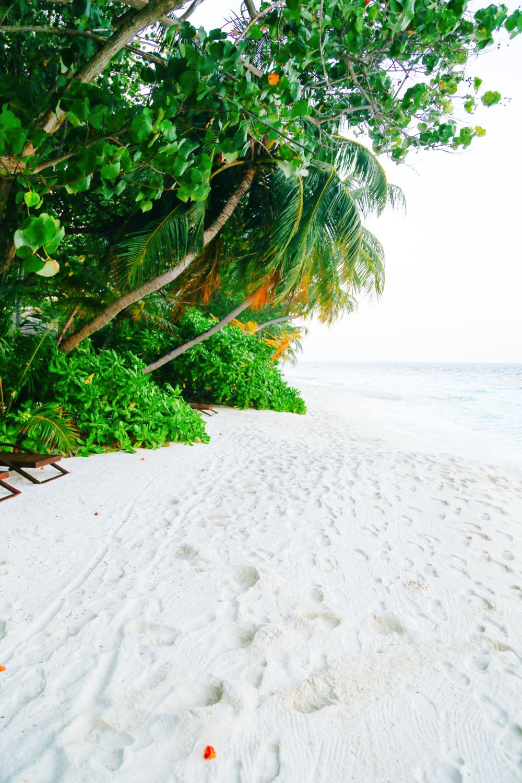 The Angsana Ihuru, Maldives (8)