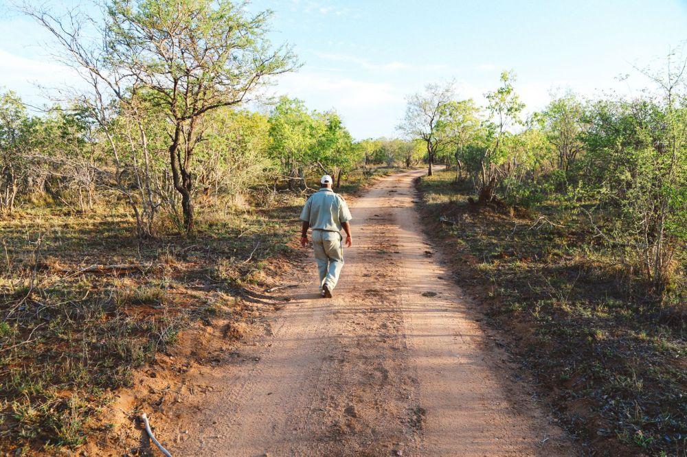 Sunrise Till Sunset - A 24 Hour South African Safari Diary (49)