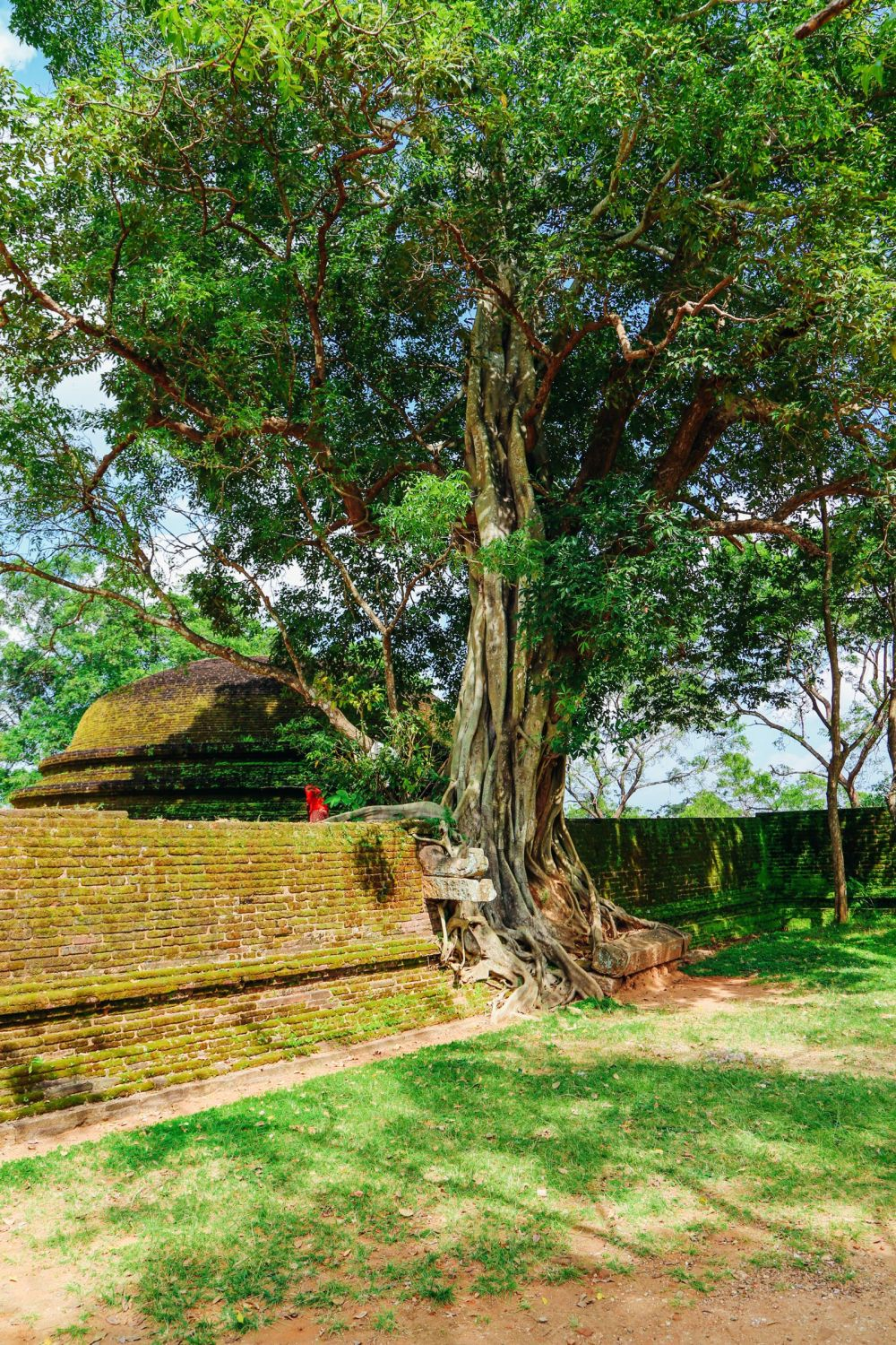 The Ancient City Of Polonnaruwa In Sri Lanka // Part 2 Of 2 (57)