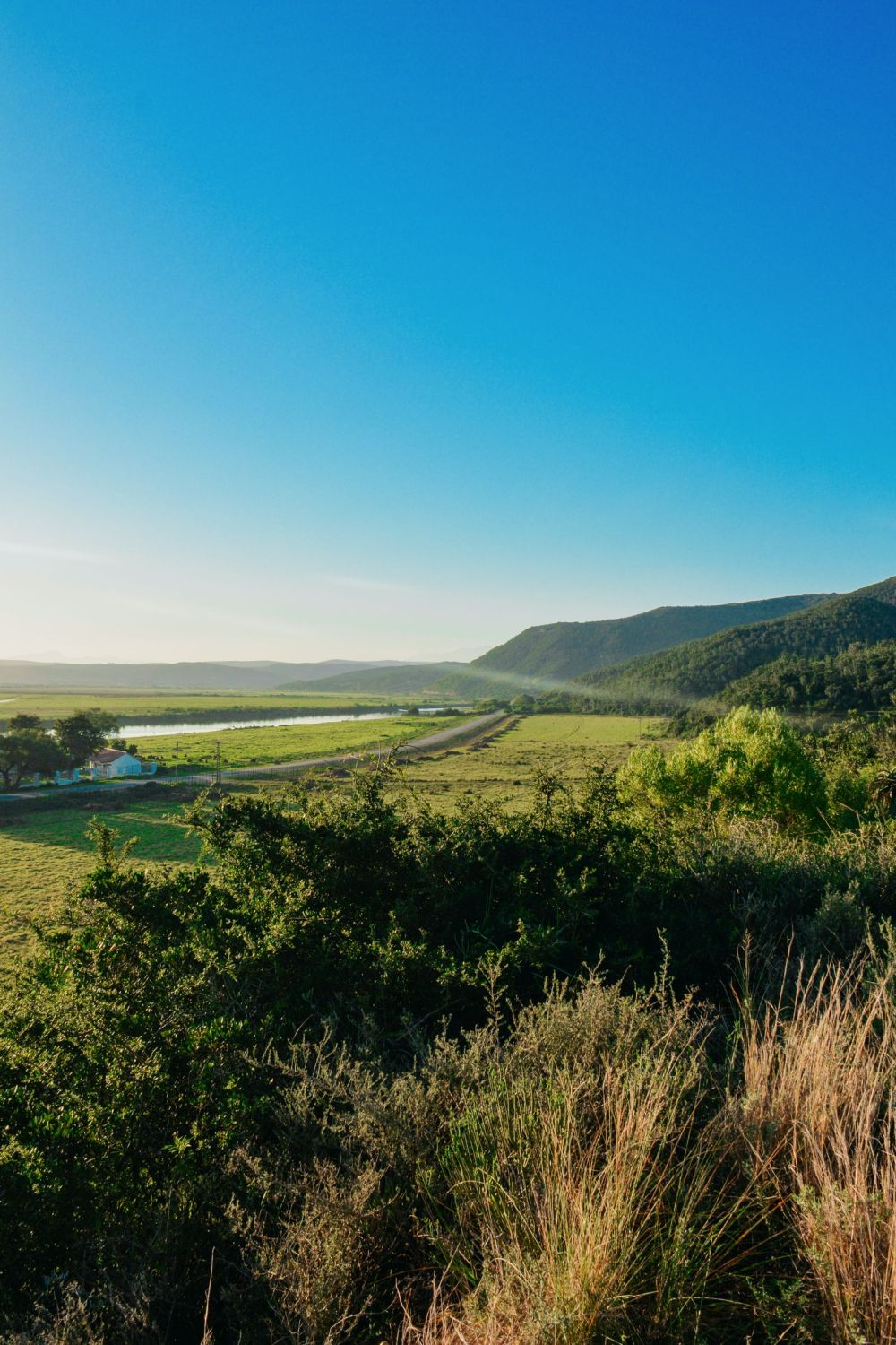 Eastern Cape Adventures In South Africa: Wines, 1,000 Year Old Trees And The Tallest Bungee In The World! (16)