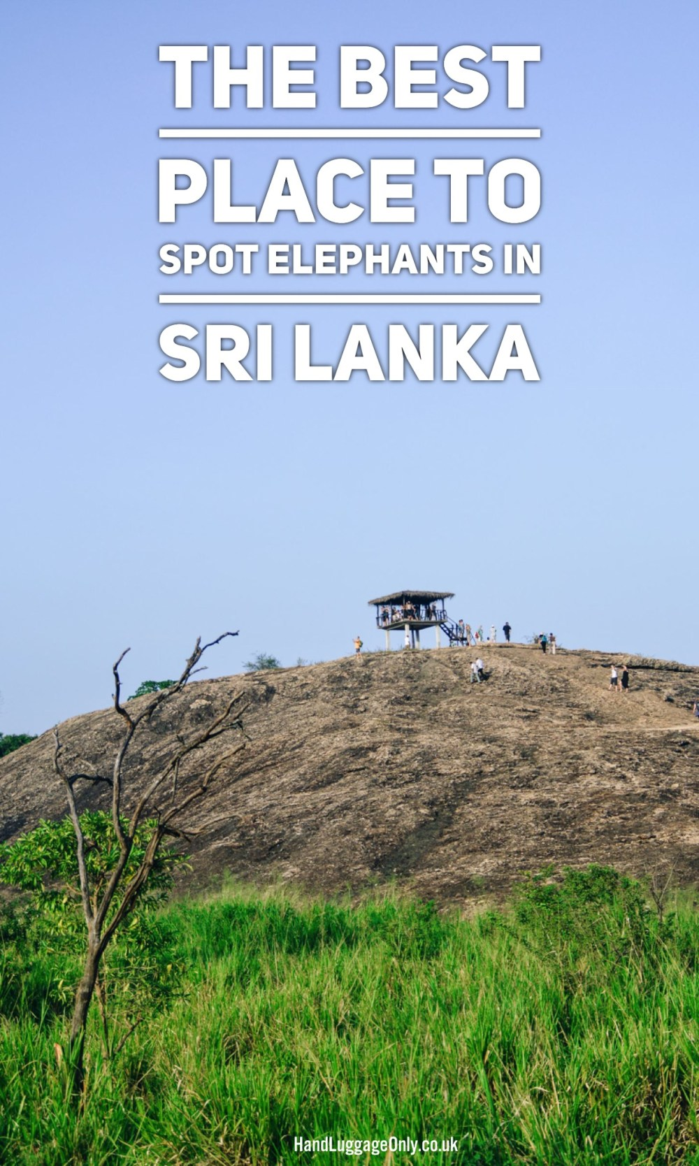 Sri Lanka Elephant Spotting National Park