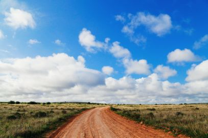 An Afternoon In Addo Elephant Park - A South African Must-Do! (8)