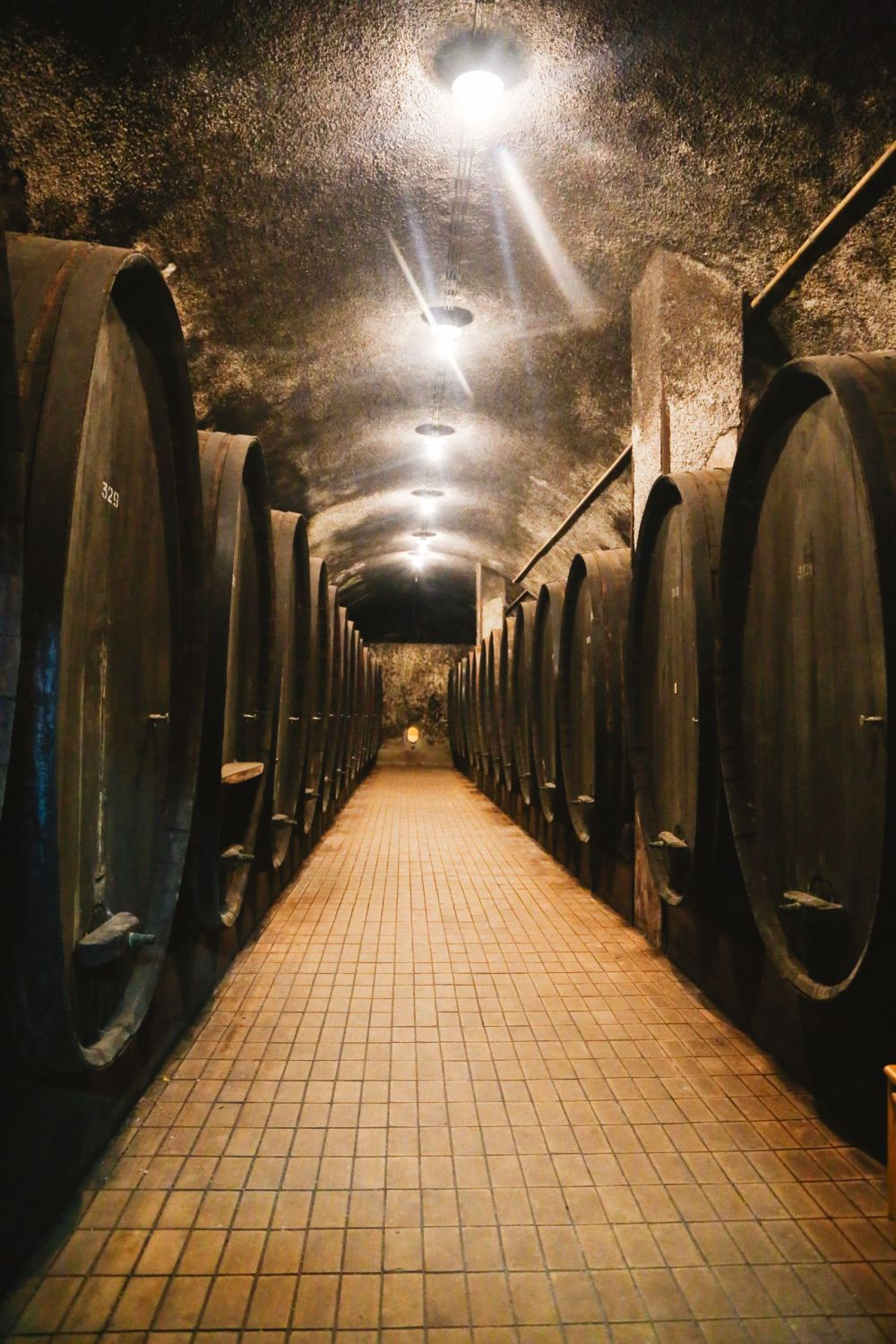 There's A Big Reason You Should Visit Slovenia This Year - The Wine! (19)