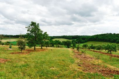 Truffle-Hunting, Chateau-Living And Wine-Tasting In the French Dordogne Valley (3)