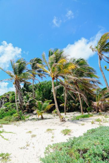 The Complete Guide To Visiting Cancun In Mexico (8)